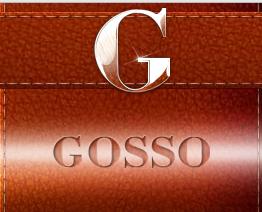 Логотип Интернет магазина Gosso